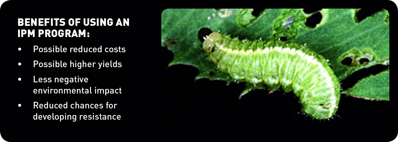 benefits of using integrated pest management