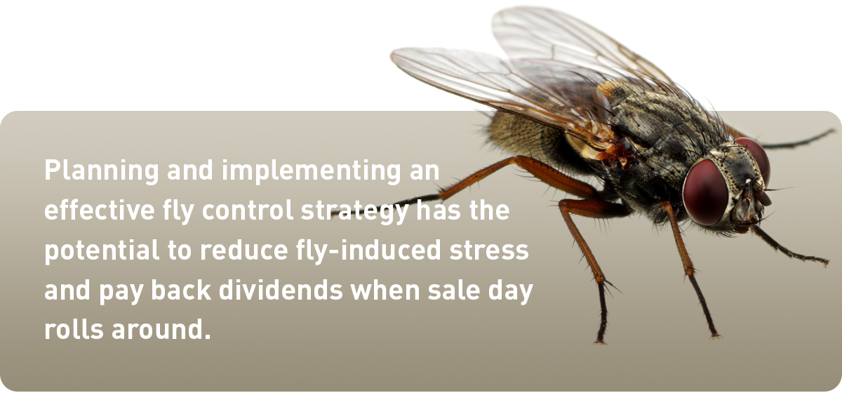 implement effect fly control
