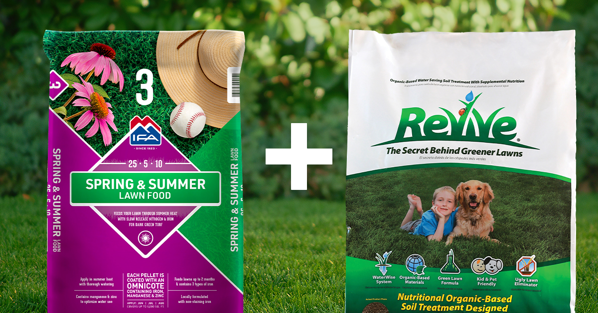 spring & summer fertilizer plus revive