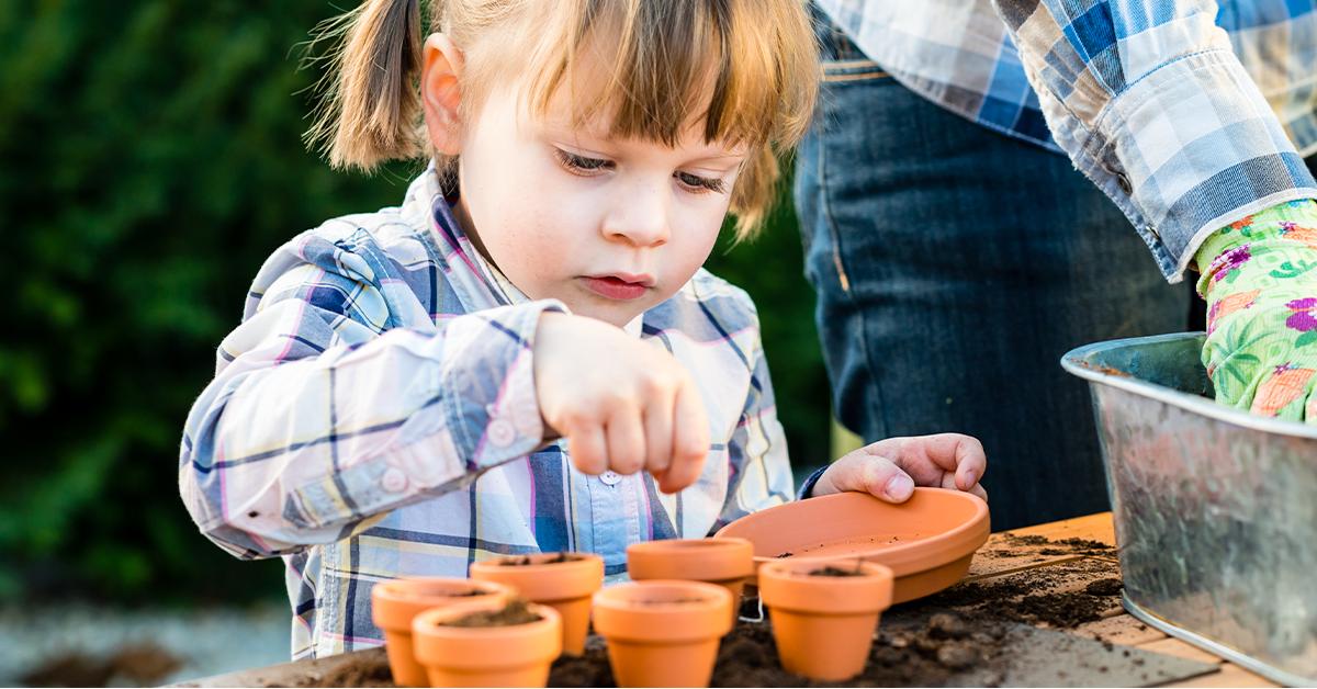 kids love to watch seeds grow