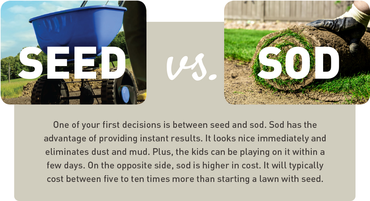 soil versus sod, what to consider when deciding which lawn method