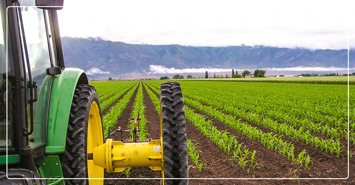 Combine Pest Control Methods into a Integrated Pest Management Program