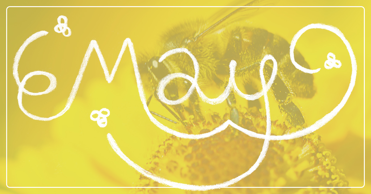 Beekeeping in May