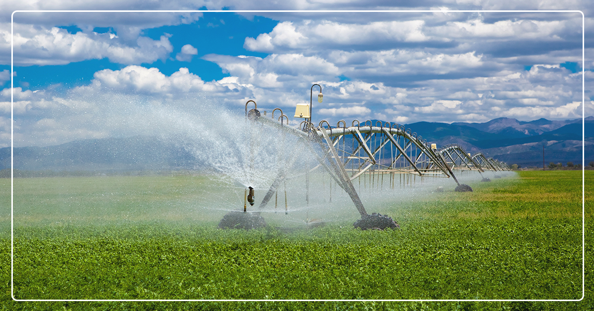 6 Tools to Defend Your Crops Against Drought