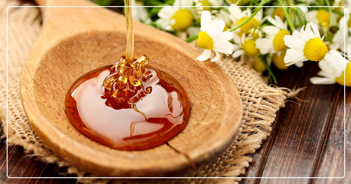 How to Harvest Honey From Your Beehive