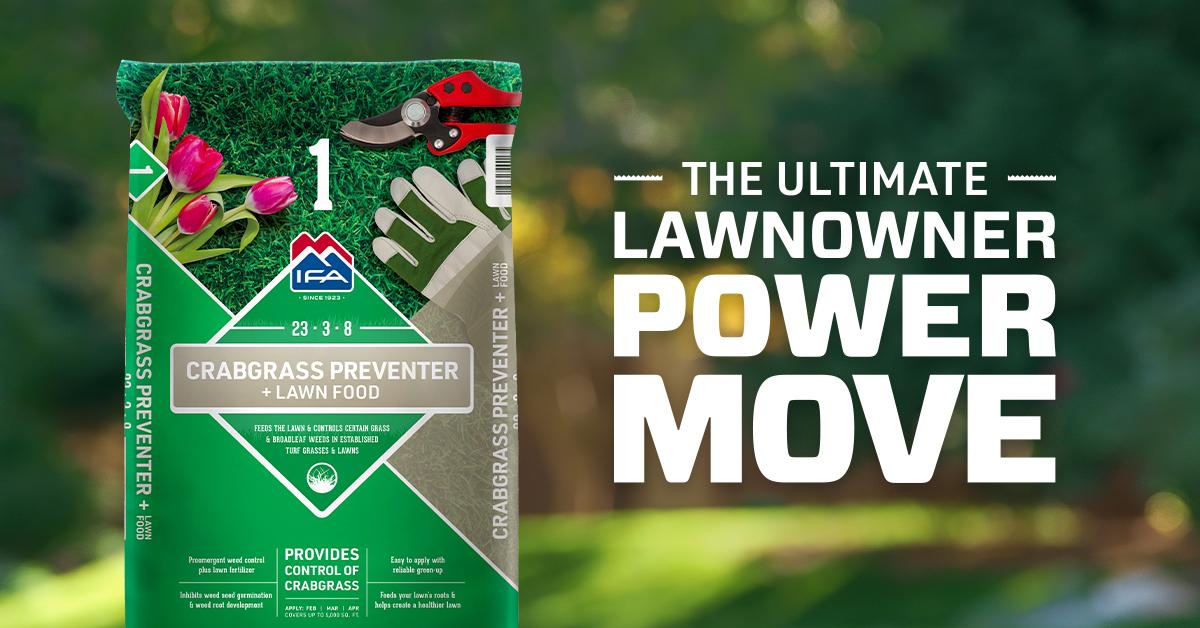 Spring Lawn Fertilizer: Step 1 to a Healthy Lawn