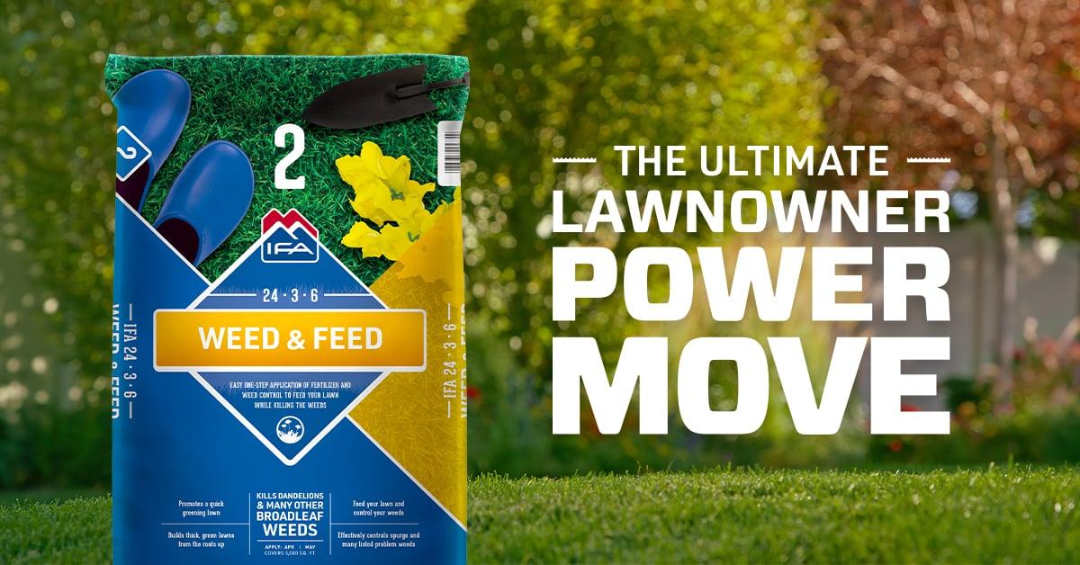 Weed & Feed Lawn Fertilizer: Step 2 to a Healthy Lawn