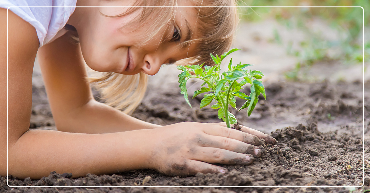 How To Build a Family-Friendly Garden Your Kids Will Love