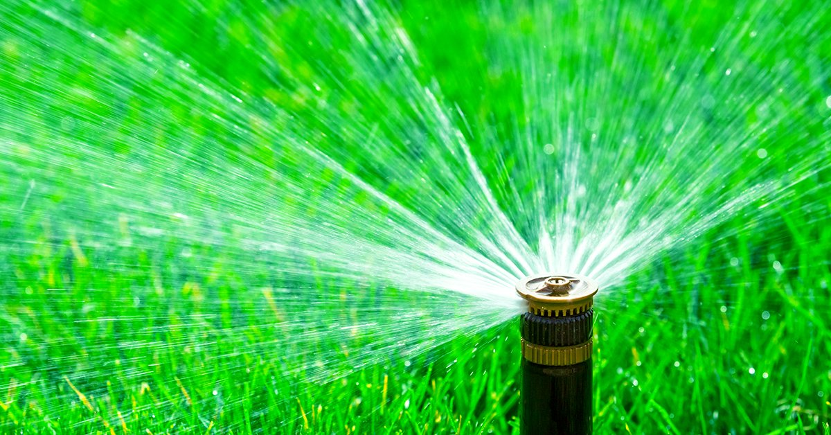 IFA's Lawn Watering Guide - The Best Time To Water Your Grass