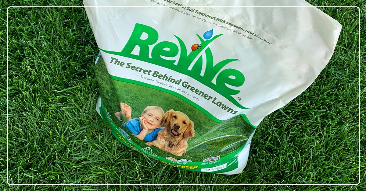 Revive Your Lawn